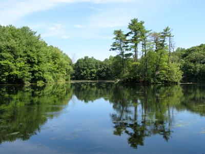 Smithers Pond