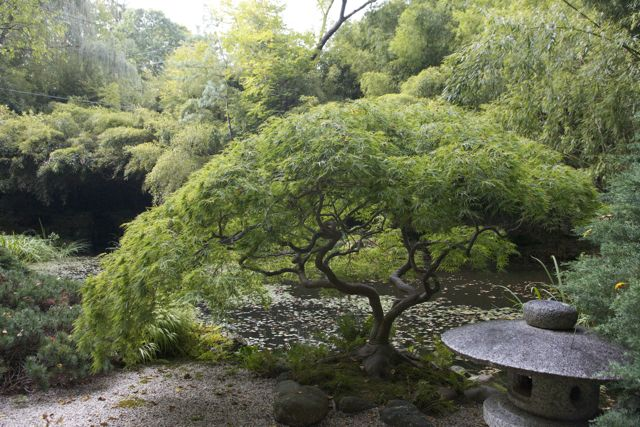 Humes Japanese Stroll Garden Long Island